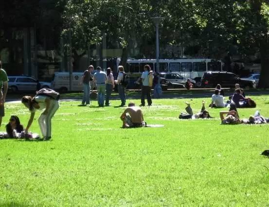 澳洲的草地