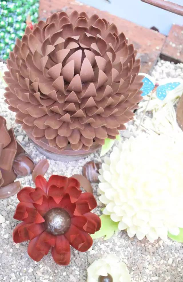 巧克力花园