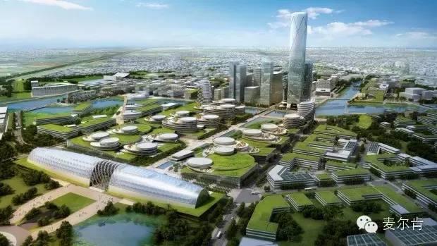 墨尔本欲用300亿澳元打造澳洲教育城